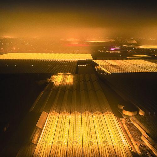 Afbeelding van Web Draait Door: lappendeken van licht